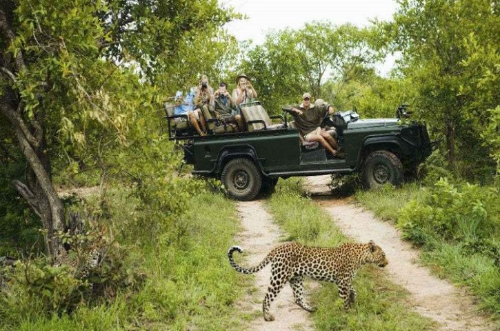 Africa Tour and Travel-Nature at Its Wild Best